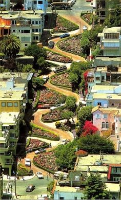 Lombard Street, San Francisco. The most crooked St. We drove down it and then walked down  the sidewalk to look at the houses and the landscaping.