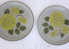 Mikasa StoneKraft Avitra Dinner Plates  2 Plate by JoulesVintage