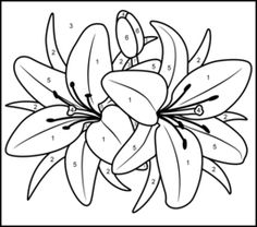 Color By Number Coloring Pages For Adults | Lily - Printable Color by Number Page