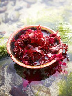 Dulse (edible Sea Weed) Frittata