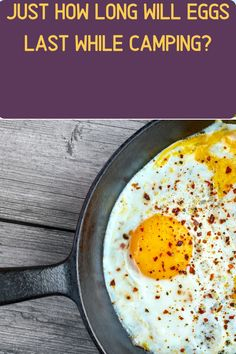 Eggs are an essential camping food. But how long will eggs last when we're out in the field and away from our refrigerator? Diy Camping, Tent Camping, Camping Hacks, Camping Gear, Nutrients In Eggs, Health Benefits Of Eggs, Pickled Eggs, Substitute For Egg, Camping Products