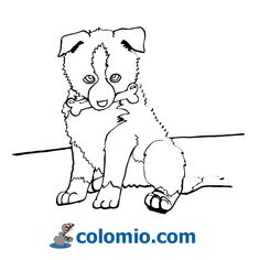 Cute dog - easy to color Dog Coloring Page, Animal Coloring Pages, Adult Coloring, Coloring Books, Tracing Art, Baby Dogs, Doggies, Pencil Drawings Of Animals, Cute Disney Drawings