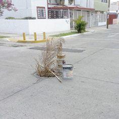 En el cruce de las calles Avellanos y Magnolias, en la colonia Tabachines del municipio de Zapopan, se encuentra una alcantarilla abierta que es un peligro constante para peatones y automovilistas. Reportero Ciudadano: Anónimo