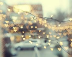 Fairy lights are just lovely.