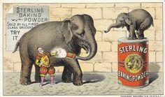 Vintage Circus Elephant On Ball | Vintage Circus Elephant Free image friday circus