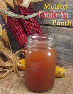 Mulled Cranberry Punch - It's great to wrap your fingers around a mug at the backyard fire pit on a cool evening, or sip from a thermos at the cross country meet on a Saturday morning, or simply snuggle up on the sofa with your favorite afghan!