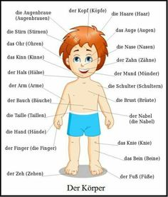 Free Online German Courses for Beginners & Advanced - Learn German . Study German, Learn German, German Grammar, German Words, Akkusativ Deutsch, Deutsch A2, German Resources, Deutsch Language, German Language Learning