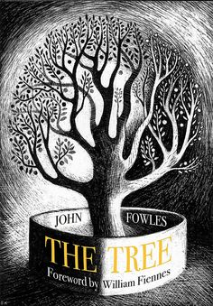 'The Tree' by John Fowles. Cover illustration by Ed Kluz (Little Toller Books) Tree Id, One Tree, John Fowles, Vintage Book Covers, Book Illustration, Illustrations, Book Cover Design, Light In The Dark, Cover Art