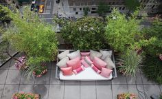 There are a bunch of roof top garden ideas on this post by Treehugger
