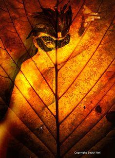 Autumn Leaf Created by Beatri Nel