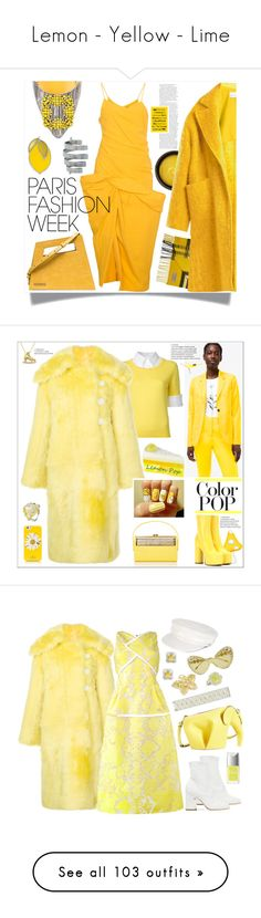 """""""Lemon - Yellow - Lime"""" by yours-styling-best-friend ❤ liked on Polyvore featuring Jacquemus, Burberry, de Mamiel, Raey, Manolo Blahnik, Givenchy, Eos, Mary Katrantzou, Wanda Nylon and Bienen-Davis"""