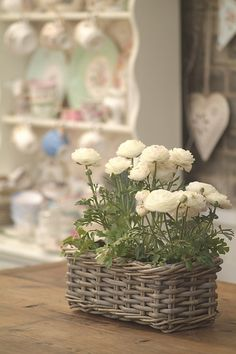 Laura Ashley Blog | IN BLOOM: PLANTING INSPIRATION FOR SMALL SPACES | http://blog.lauraashley.com