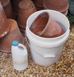 Autumn: Disinfect & store pots. First, combine equal parts white vinegar, rubbing alcohol, & water in a spray bottle. Apply the mixture to pots, and scrub with a wire brush. Next, stack pots in a bucket or wheelbarrow, adding 1 cup bleach per gallon of water; soak overnight. Use the wire brush to scrub off remaining dirt. Let pots dry completely. Line the inside of each pot with burlap, and stack. (We snipped holes in the burlap and stored our on wooden dowels screwed to a board)