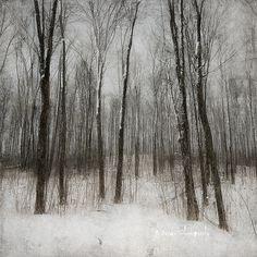 Warm Woolen Mittens by Jamie Heiden Contemporary Landscape, Abstract Landscape, Landscape Paintings, Nostalgia Art, Painting Snow, Candy Art, Seascape Art, Encaustic Art, Country Art