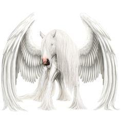 ~ Winter Pegasus ~ - Howrse