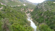 Gaucín-El Colmenar Hacia el cañón de las buitreras