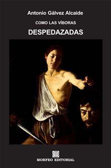 DESPEDAZADAS es la segunda fracción de COMO LAS VÍBORAS, una novela del escritor barcelonés Antonio Gálvez Alcaide.    Sinopsis de COMO LAS VÍBORAS:…  lee más en Kobo.