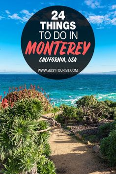 Wondering what to do in Monterey, CA? This travel guide will show you the top attractions, best activities, places to visit & fun things to do in Monterey, CA here. Start planning your itinerary & bucket list now! #Monterey #ThingsToDoInMonterey #California #Californiatravel #usatravel #usatrip #usaroadtrip #travelusa #ustravel #ustraveldestinations #travelamerica #americatravel #vacationusa