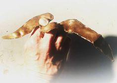 Anello Liberty Tessuto,Tinta acrilica,Perla,filo di Argento.