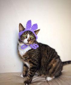 Easter Bunny Hat for Cat Crochet Purple Violet Costume Hat for Cat Unique Handmade Pet Accessories