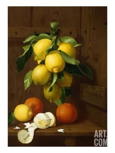 A Still Life of Lemons and Oranges Giclee Print by A Mensaque at Art.com