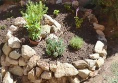 8 Reasons To Create Your Own Herb Spiral + How To Build OneAre fresh herbs not showing up in your dinners as often as you'd like? Buying specialty greens at the grocery store quickly gets expensive, but devo. Herb Spiral, Spiral Garden, Herb Garden, Lawn And Garden, Garden Hoe, Garden Sheds, Permaculture, Growing Herbs, Kraut