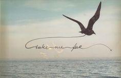 small bird tattoo tattoo - i'd love this saying 'take me away'....