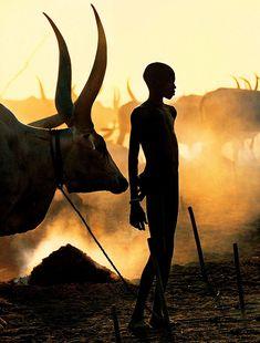 30年以上にもなるアフリカでの撮影。写真家のキャロルとアンジェラの移動距離は270,000マイルになり、40ヶ国で150ものアフリカ部族をカメラに収めてきた。その中で今回紹介するのは、南スーザンのディンカ族の写真だ。