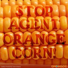 Take Action and Stop Agent Orange Corn! More Info Here: http://www.foodrevolution.org/blog/agent-orange-corn