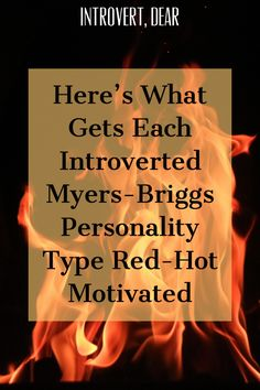 Here's the one secret ingredient that gets each introverted Myers-Briggs personality type fired up — and makes them shine. Meyers Briggs Personality Test, Istp Personality, Pseudo Science, Introvert Problems, Myers Briggs Personalities, Knowledge And Wisdom, Infj, How To Be Outgoing, Motivation