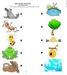 Match Farm Animals To Their Babies Turtlediary Com