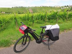 Juli_e_cycle à Remich, la Perle de la Moselle et son vignoble, Luxembourg. Sublime vue à vélo ! #velo #bicyclette #veloelectrique #ebike #vae #tourdefrance #cyclingtour #cyclotourisme #RestartCycleTourism #luxembourg #luxemburg #remich #fahrrad #vin #vignoble #wein #wine #voieverte #cyclingtour #juli_e_cycle #velafrica