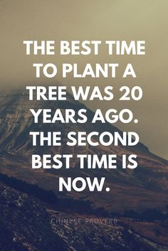 Best time to plant a tree.
