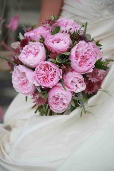Miranda #rosaprima #pink #roses #brides #weddings #flowers