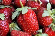 Louisiana State Fruit: Strawberry