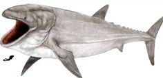 este es el Leedsichthys, el pez más grande que jamás ha existido. Los animales extintos más impresionantes de la historia - Página 8 - ForoCoches