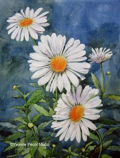 watercolor daisies | Loves me, Loves me not – Watercolor (Framed 15 x 18) By Yvonne Pecor ...