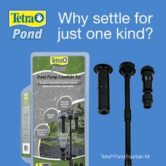 Why settle for just one kind of pond fountain this pond season? Fountain Kits from Tetra® Pond comes with three fountain heads: frothy, spray and bell pattern. Fountain Head, Tetra Fish, Pond Pumps, Pond Fountains, Ponds Backyard, Water Garden, Water Features, Pattern, Aquarium