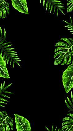 Tree Wallpaper Iphone, Flower Background Wallpaper, Flower Phone Wallpaper, Neon Wallpaper, Trendy Wallpaper, Flower Backgrounds, Pretty Wallpapers, Black Wallpaper, Wallpaper Backgrounds