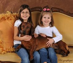 Biggest Dachshund in the World! » Pet'ographique Blog