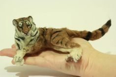 Lying Tiger- Wild Cat - by Malga