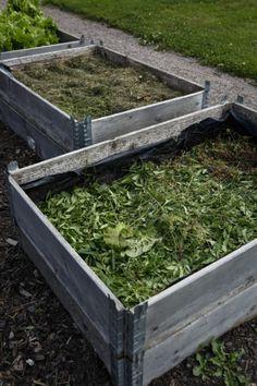 Fiffig, lättskött köksträdgård – Trädgård på djupet