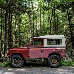 Fall is coming, the perfect time of year for some forest exploration in your…