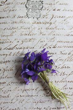 violet bouquet on handwritten letter. Purple Flowers, Beautiful Flowers, Beautiful Beautiful, Color Lavanda, Old Letters, Writing Letters, Royal Colors, Sweet Violets, Deco Floral