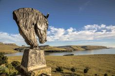 Horses Heads with a View Sterkfontein Dam Free State, Horse Head, Nature Reserve, Wild Horses, South Africa, Lion Sculpture, African, Statue, Country