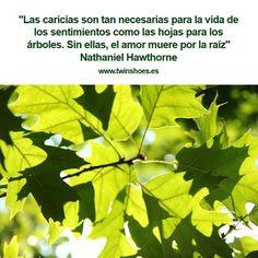 """""""Las caricias son tan necesarias para la vida de los sentimientos como las hojas para los árboles. Sin ellas, el amor muere por la raíz."""" Nathaniel Hawthorne."""
