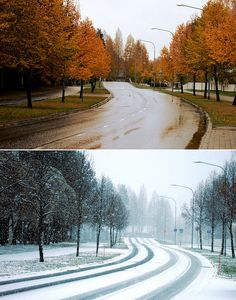 Autumn vs. Winter | by Siniirr Country Roads, Autumn, Explore, Winter, Winter Time, Fall, Winter Fashion, Exploring