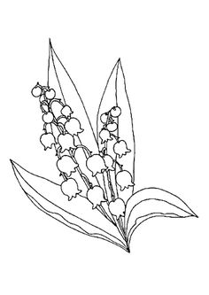 coloriages printemps muguet