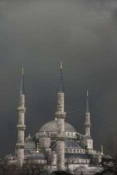 size: Photographic Print: Blue Mosque - Sultan Ahmet Camii by Design Pics Inc : Artists Yosemite National Park, National Parks, Blue Mosque, Islamic Wallpaper, Islamic Pictures, Ways Of Seeing, Blue Aesthetic, Islamic Art, Beautiful World