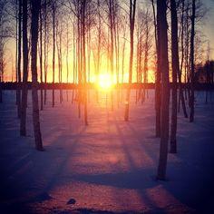 February, Kuivasjärvi, Oulu